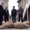 Kırım Başbakanı Aksyonov'dan Müslümanlara kurban bayramı hediyesi